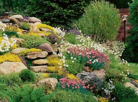 Sustainable Landscape Gardener Full Time Harmony Gardens Landscaping Ottawa Ontario
